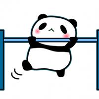 パンダ 鉄棒
