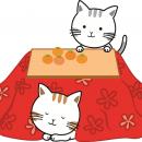 コタツ 猫