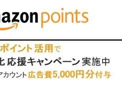 Amazonポイント 広告費